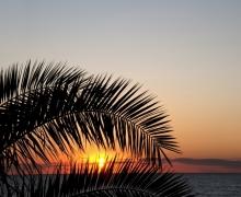 Фотопечать на рулонных шторах – Природа и пейзажи_7