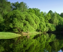 Фотопечать на рулонных шторах – Природа и пейзажи_8