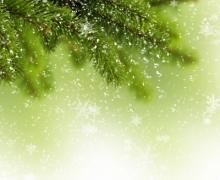 Фотопечать на рулонных шторах – Листья и деревья_10