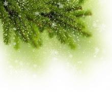 Фотопечать на рулонных шторах – Листья и деревья_11