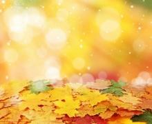Фотопечать на рулонных шторах – Листья и деревья_12