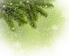 Фотопечать на рулонных шторах – Листья и деревья_9